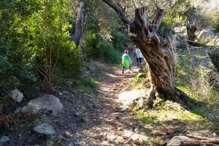 Familien Wanderung Mallorca