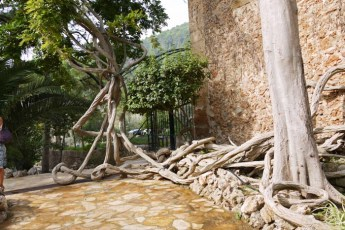 gärten-von-alfabia (15 von 20)