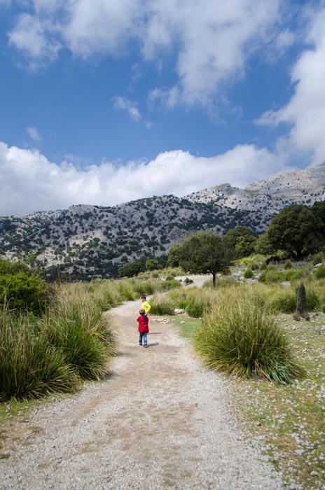 Wandern am Stausee Cuber, Mallorca