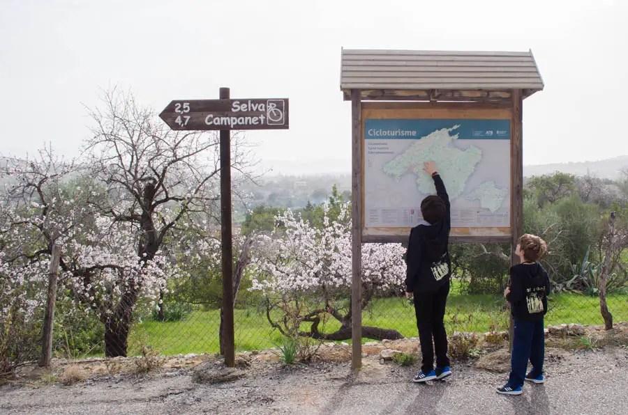 Ausflug von Caimari nach Binobona