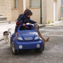 Mietwagen auf Mallorca - Auto mieten auf Mallorca