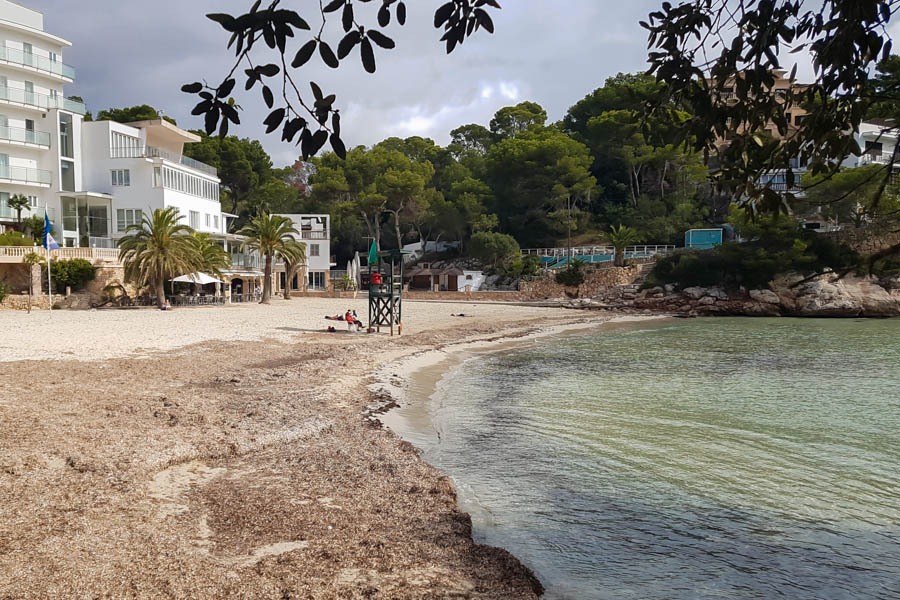 Strand Cala Santanyi