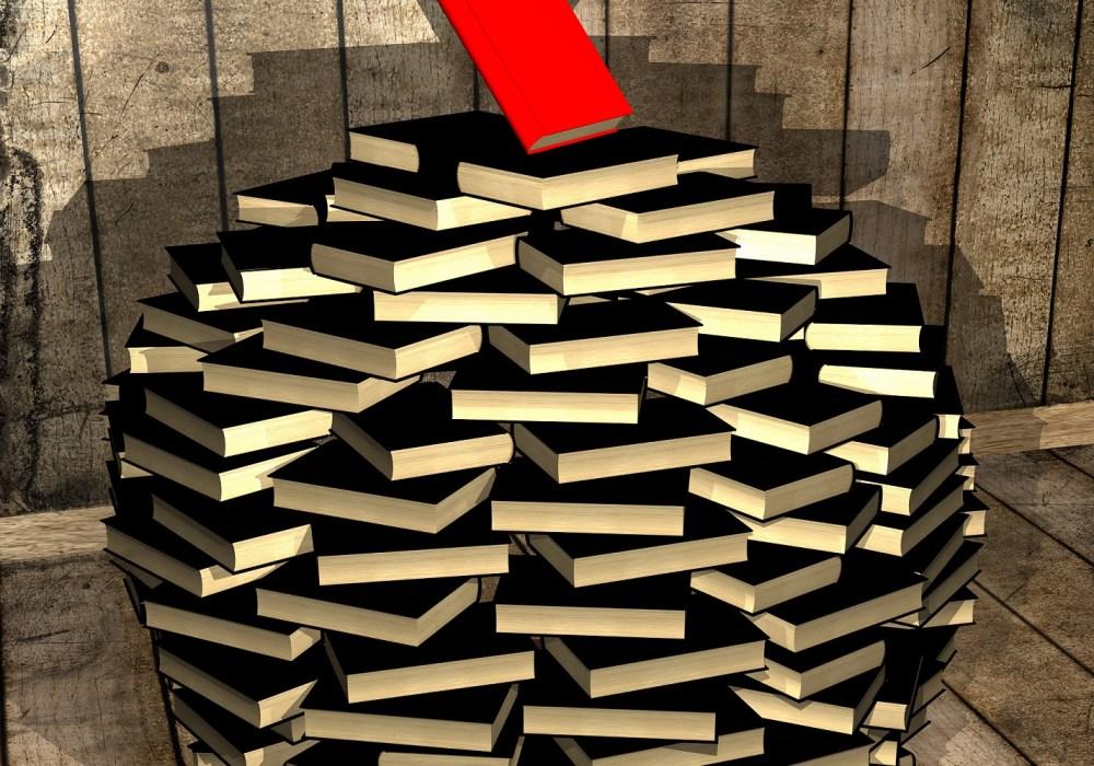 Hey Author What Makes Your Novel Unique?