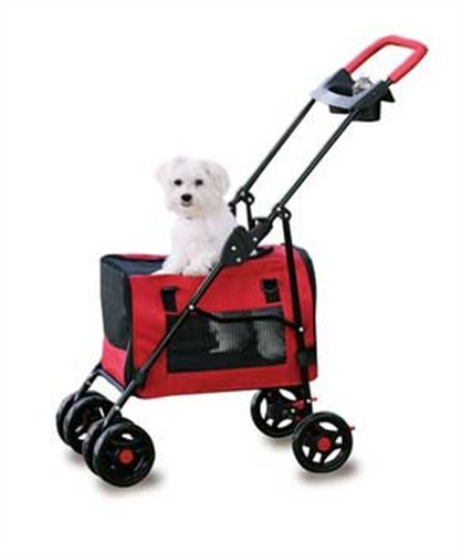 Stroller for Your Maltese Dog