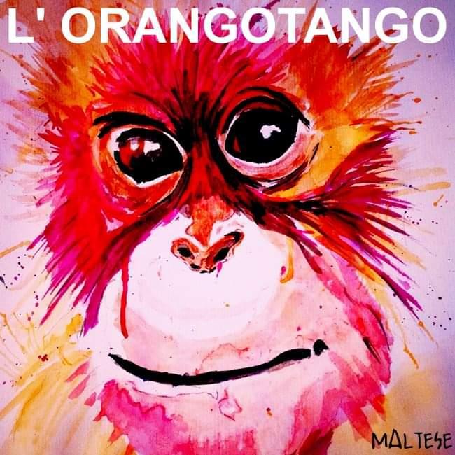 NUOVO SINGOLO ~ L' Orangotango