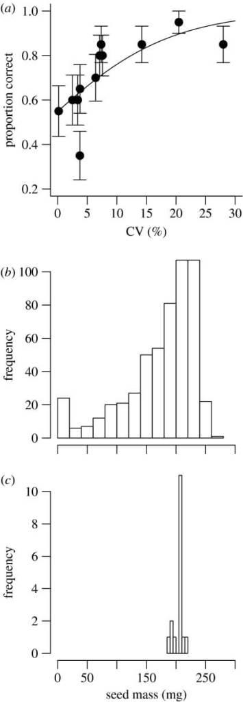 keçiboynuzu çekirdeği ağırlığı dağılımı