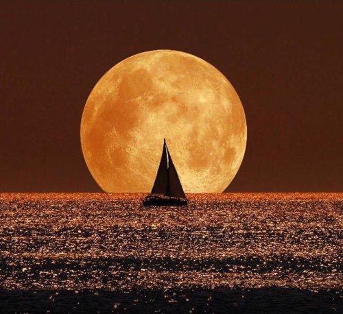 fotoşoplanmış ay fotoğrafı