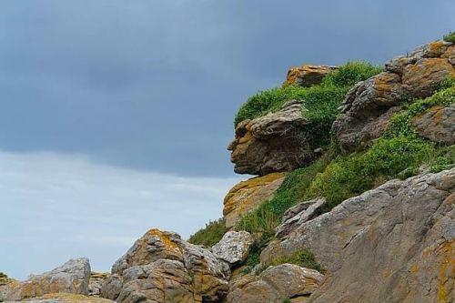 pareidolia kayalık