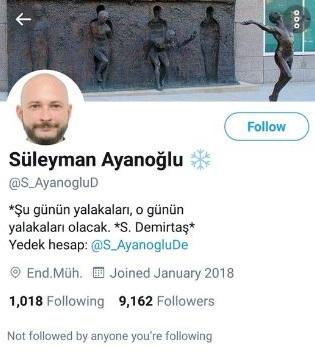 Süleyman Ayanoğlu