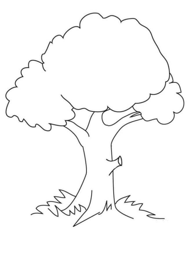 Ausmalbilder zum Drucken Malvorlage Baum kostenlos 2