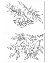 Malvorlagen von Laub Blätter kostenlos zum Ausdrucken