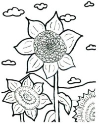 Malvorlagen von Sonnenblume kostenlos zum Ausdrucken