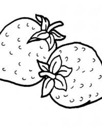 Malvorlagen von Erdbeere kostenlos zum Ausdrucken