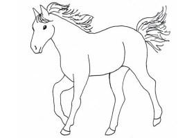 Malvorlagen ,Ausmalbilder, pferde 10   Malvorlagen ...