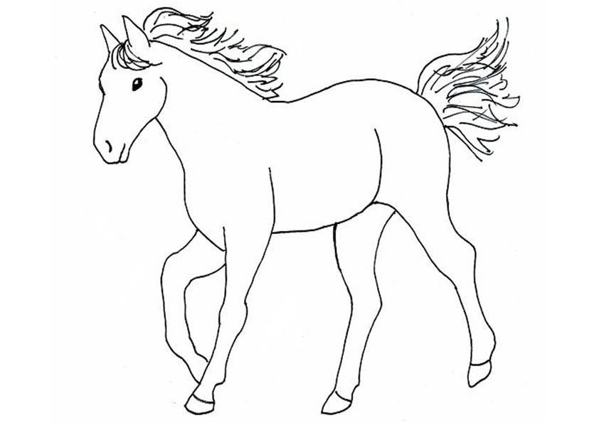 Malvorlagen Ausmalbilder pferde-10 Malvorlagen