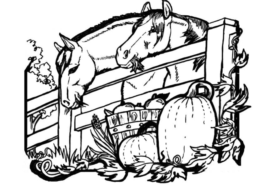 Malvorlagen Ausmalbilder Pferde-22 Malvorlagen