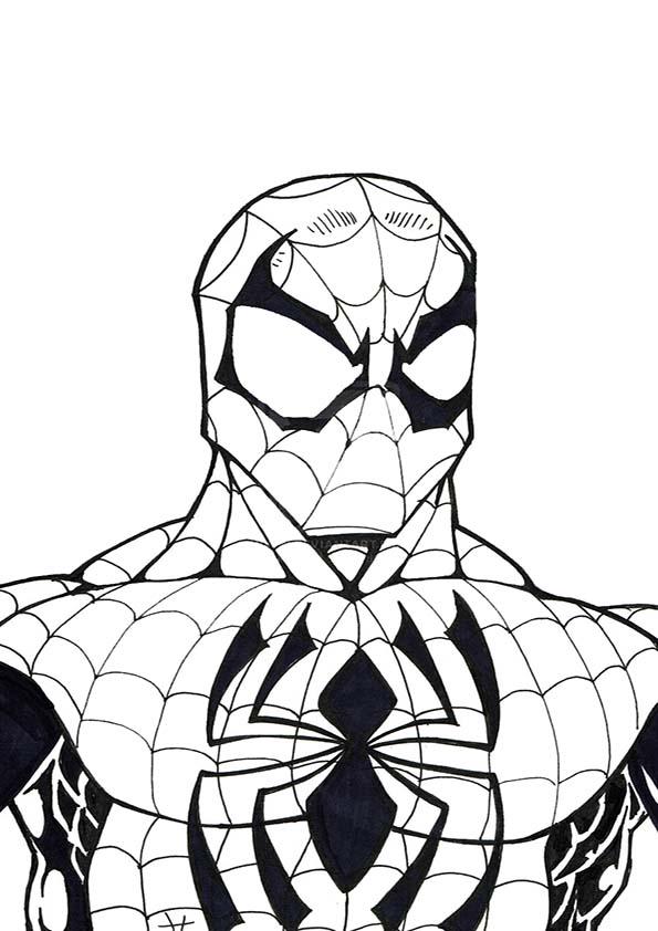 Malvorlagen Ausmalbilder Spiderman Malvorlagen