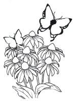 Malvorlagen  Blumen 6   Malvorlagen Ausmalbilder