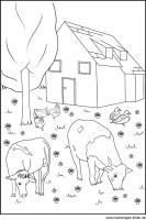 Bauernhof   Malvorlagen und Ausmalbilder für Kinder