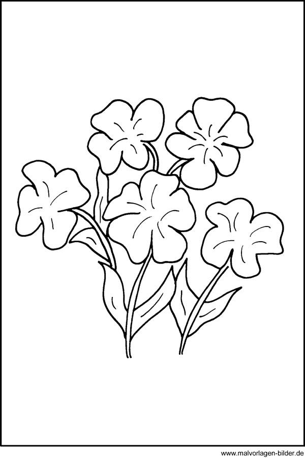 Kostenlose Malvorlagen - Blumen Fensterbild