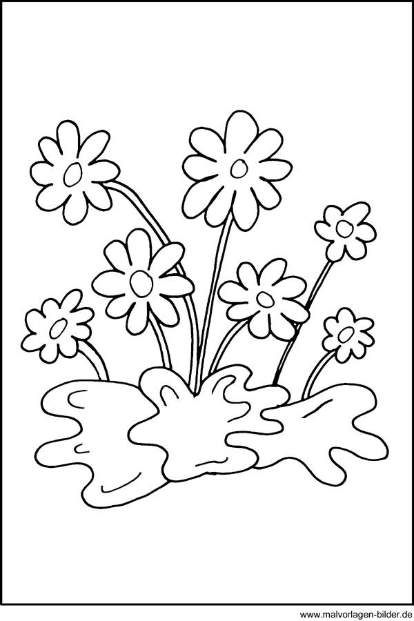 Fensterbild mit Blumen - Window Color Bild