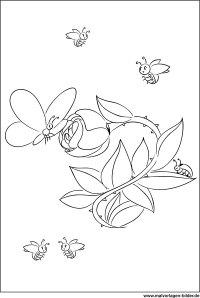 Blumen Schmetterling Kfer - gratis Malvorlagen