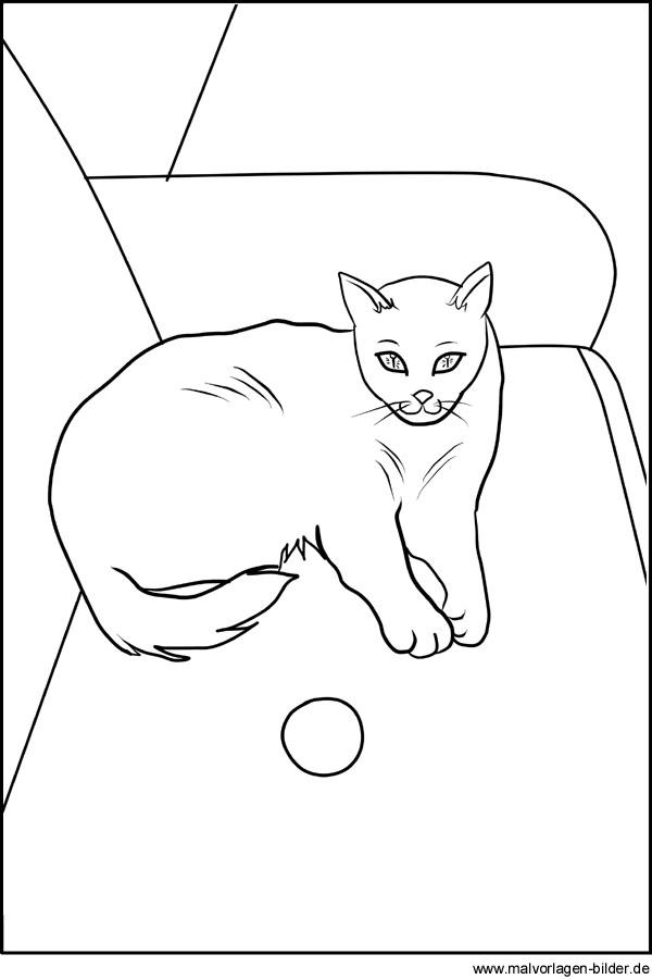 Ausmalbild Katze Einfach - Kostenlos zum Ausdrucken