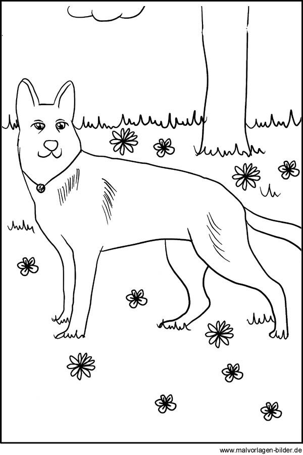 Kostenlose Malvorlagen Hund Ausmalbild