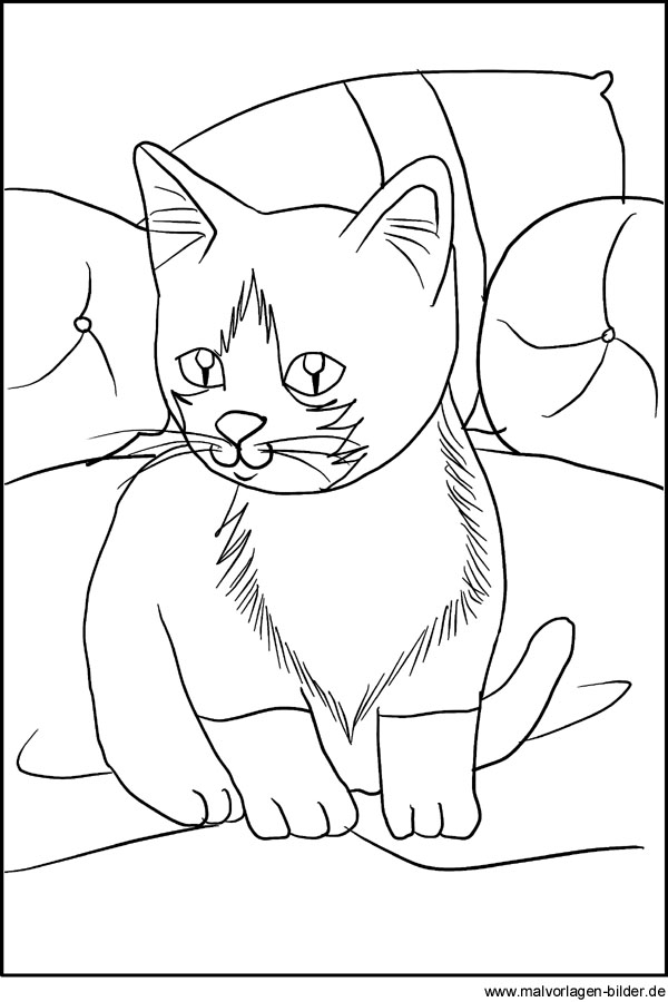 Malvorlage Katze - Kostenlose Ausmalbilder zum Ausdrucken