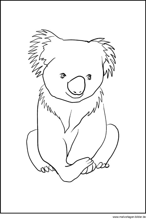 Koala Bär Ausmalbild - Malvorlagen zum Ausdrucken