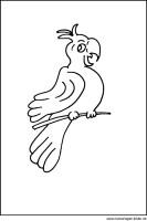 Malvorlage Papagei   kostenloses Ausmalbilder zum Ausdrucken