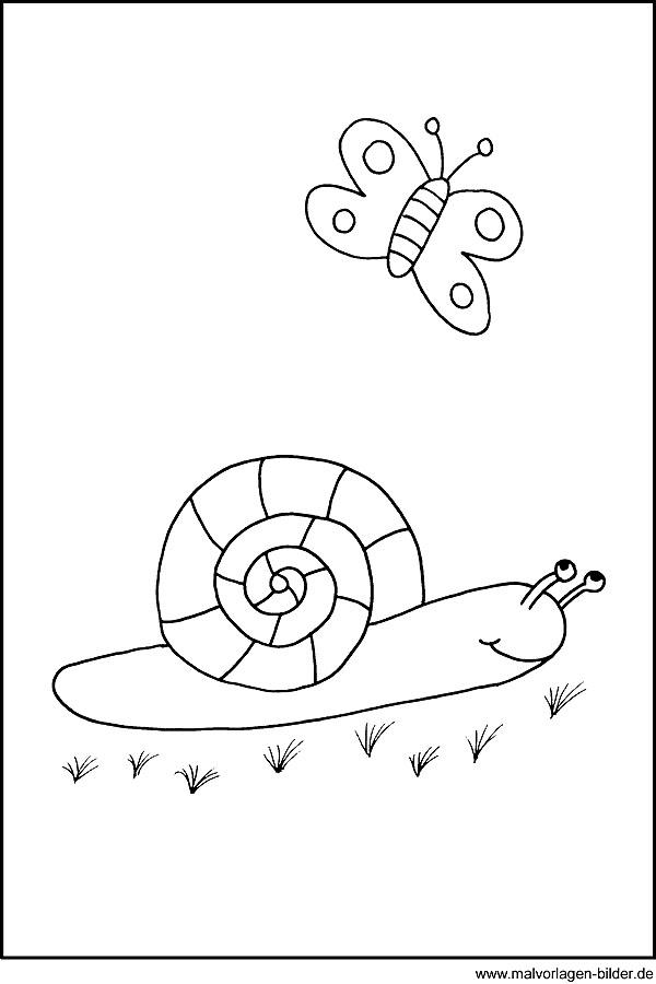 Schnecke - Ausmalbilder für Kinder