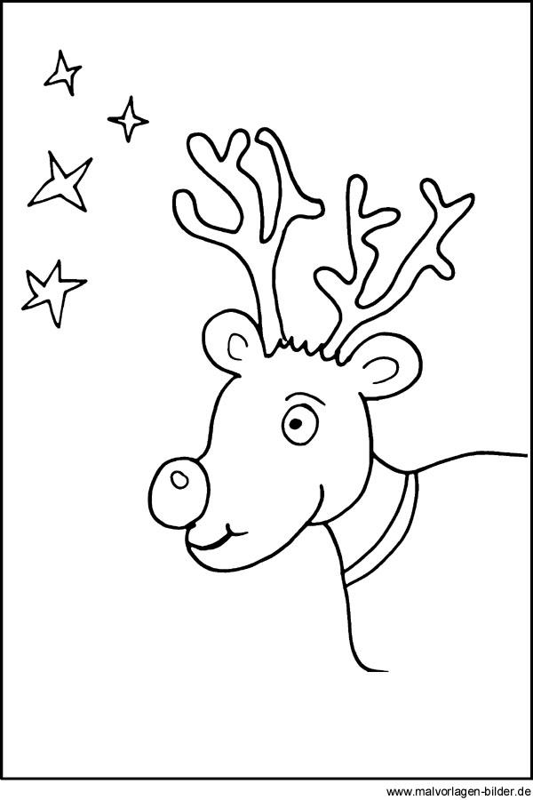 Malvorlagen - Rentier Weihnachten und Sterne