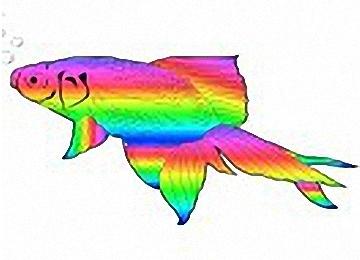 37 Fisch Kommunion Vorlage Zum Ausdrucken - Besten Bilder