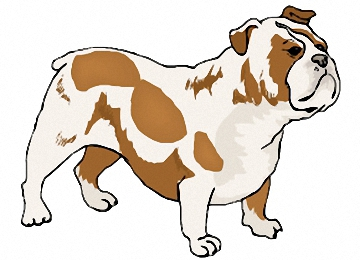 Malvorlagen Hunde Englische Bulldogge