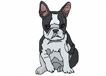 Owalo design Hundewelpen Ausmalbilder Gratis