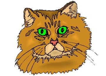 Katzenkopf Bilder Zum Ausmalen
