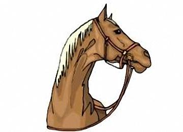 Pferdekopf Malvorlagen Gratis