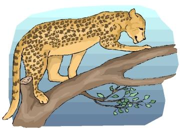 Leopard Malvorlagen Ausdrucken