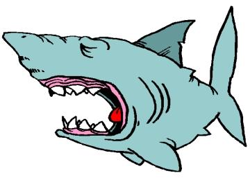 Window Color Vorlagen Weißer Hai