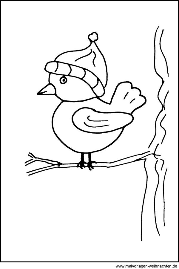 Malvorlage Vogel  Kostenlose Ausmalbilder und Window