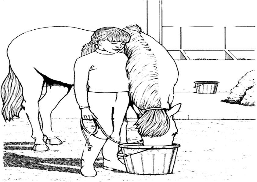 Malvorlagen Pferde-14 Malvorlagen Gratis