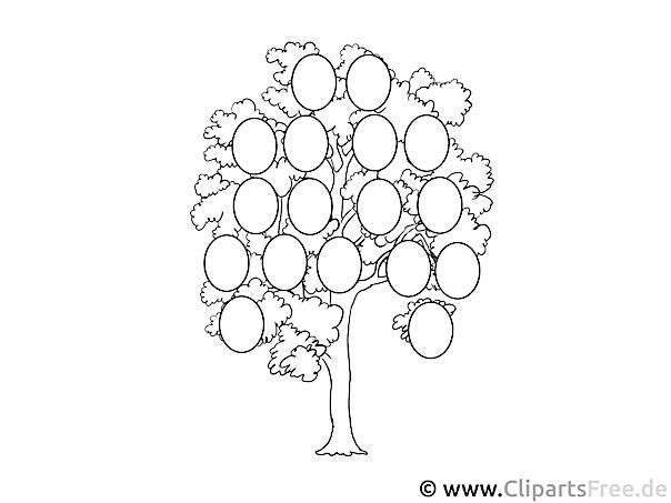 Stammbaum Bild zum Ausmalen
