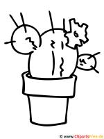 Kaktus Malvorlage fuer Kinder