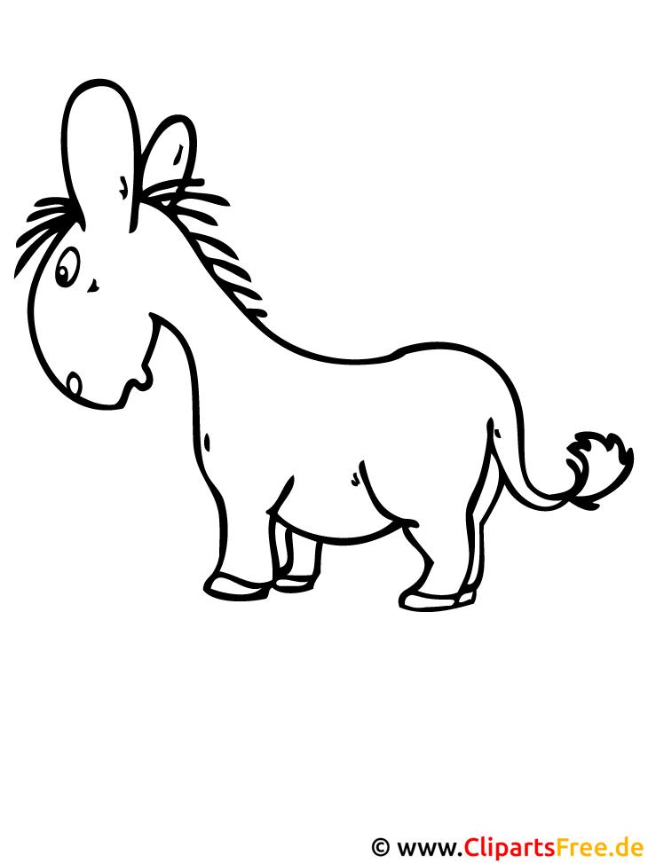 Ausmalvorlage Esel - Tiere Ausmalvorlagen