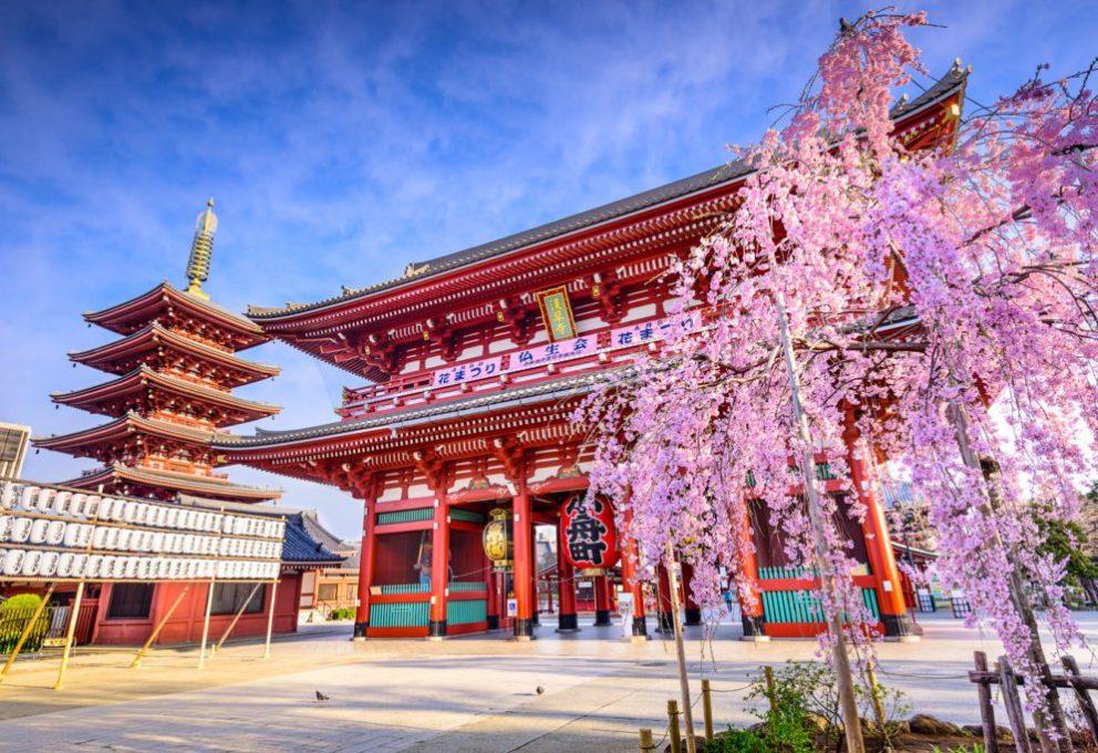 TOKYO, IL CUORE DEL SOL LEVANTE #MAMEHOLIDAYS