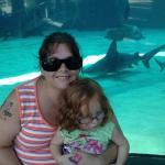 Aquarium Life of the Pacific