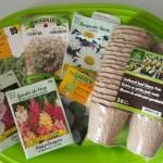 Balcony Gardening – Creating an Oasis