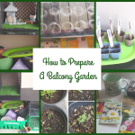 How to Prepare a Balcony Garden – Container Gardening