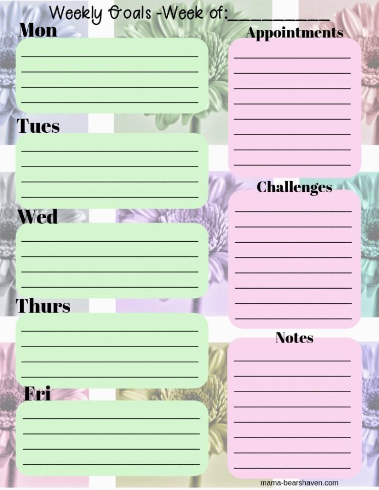 weekly goal planner